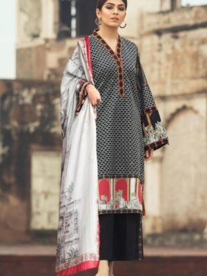 *On Sale* Rang Rasiya's Luxury Festive Carnation – RESTOCKED Chiffon Dupatta Salwar Suit